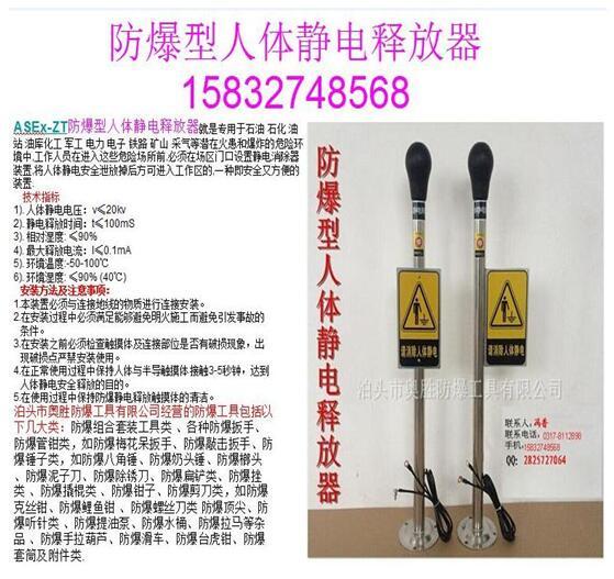 贵州 全铜材质防爆人体静电释放器 ASEX-ZTQT