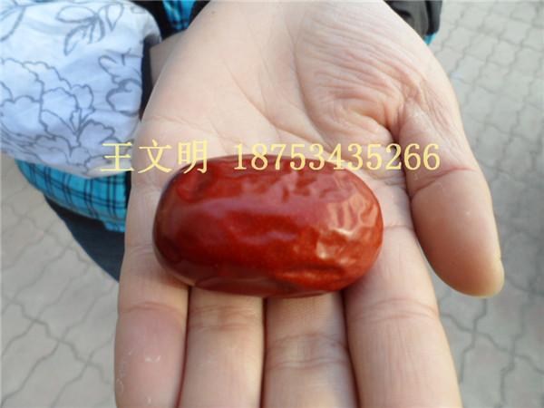 山東批發供應新疆大棗價格