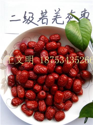 厂家促销 批发供应大量正宗新疆特产若羌灰枣