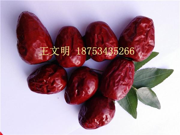 哪里能批发到质量好价格低的新疆红枣