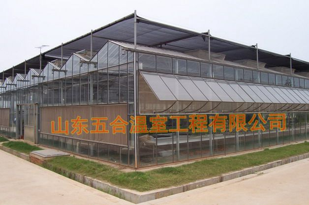山东五合玻璃温室