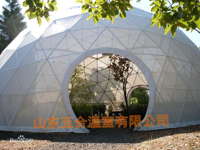 山东五合鸟巢温室