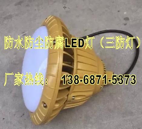 防水防尘防腐灯-FAD-E20g 附LED光源20W 220V/IP65-工厂弯灯