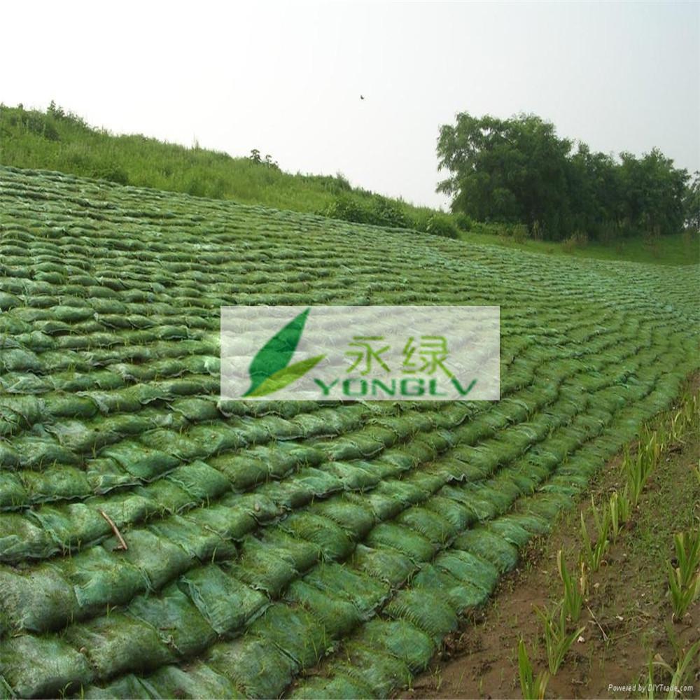生态袋植生袋植草毯植被垫厂家供应植生袋