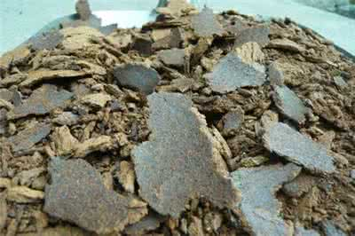 漢江養殖場大量求購菜餅豆餅青餅黃餅芝麻餅等飼料