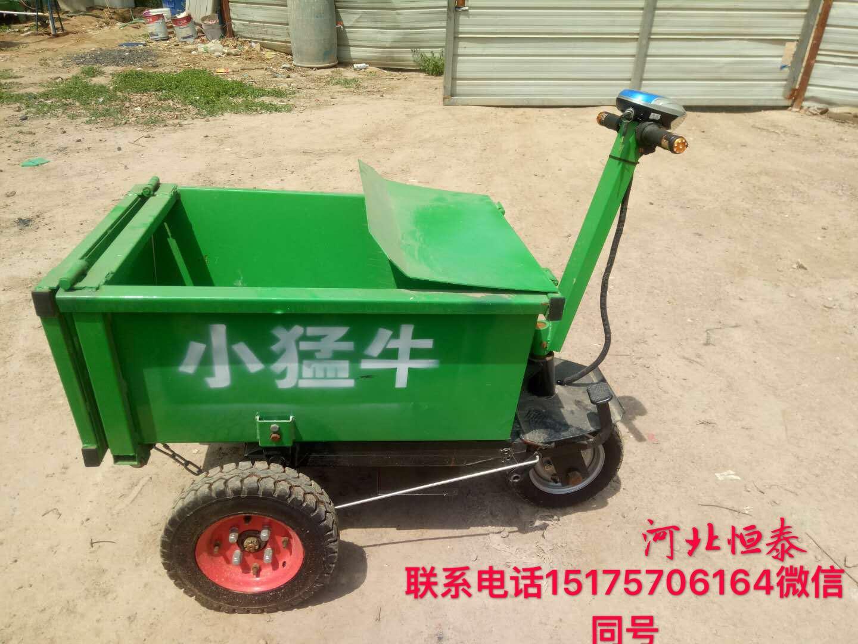 河北厂家生产电动运输车小猛牛800w价格低  质量好