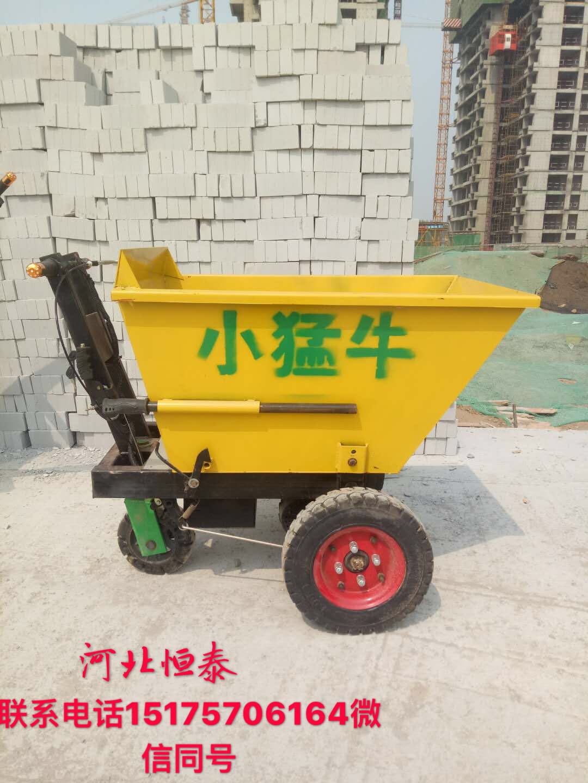 河北电动工具车厂家直销价格低 质量好 800w多功能 可自卸