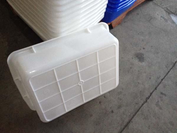 清远塑料食品箱蔬菜筐生产商