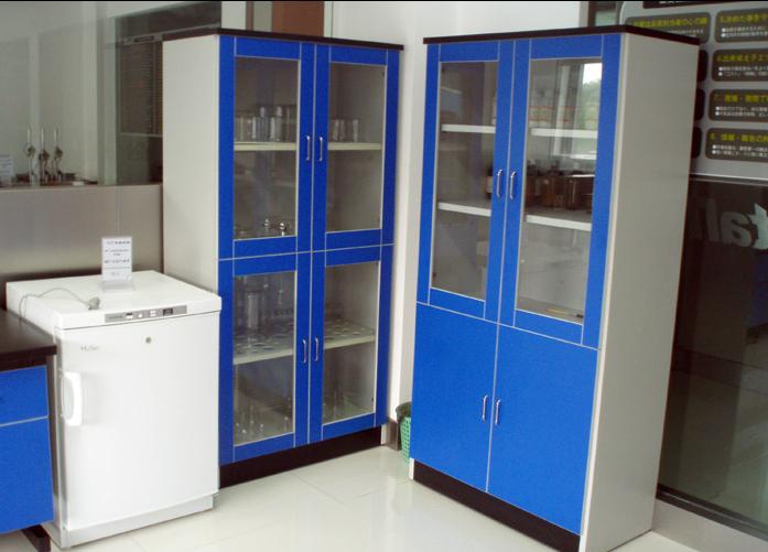 实验室试剂柜,器皿柜,钢木器皿柜,PP药品杨