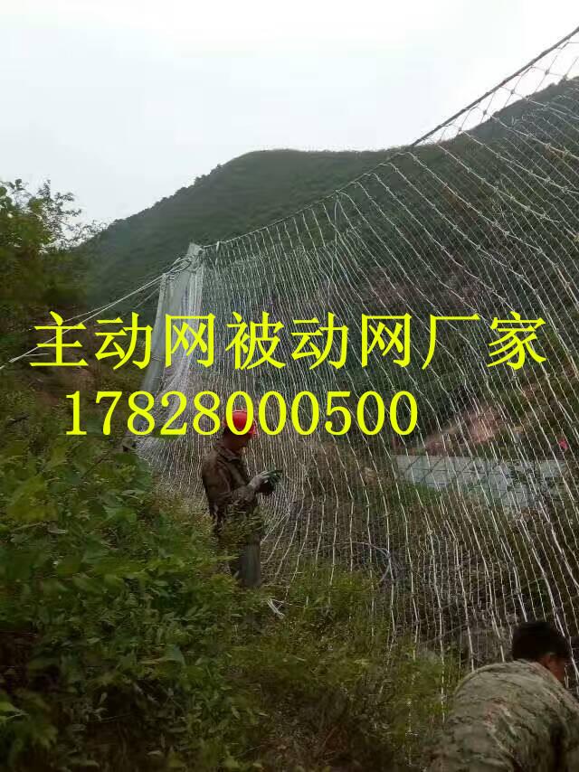 贵州被动防护网厂家RXI150