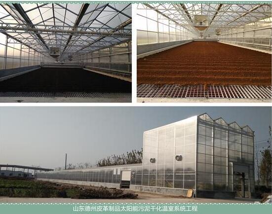 太陽能皮革污泥干化溫室