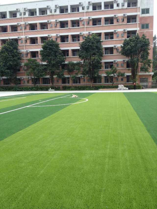 广西玉林人造草坪 足球场价格 学校草坪 运动场地假草