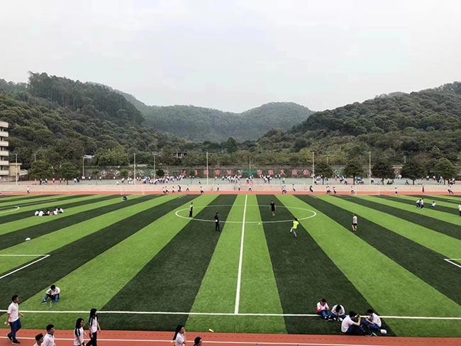 广西宾阳学校足球场地 运动场人造草坪施工 包工包料