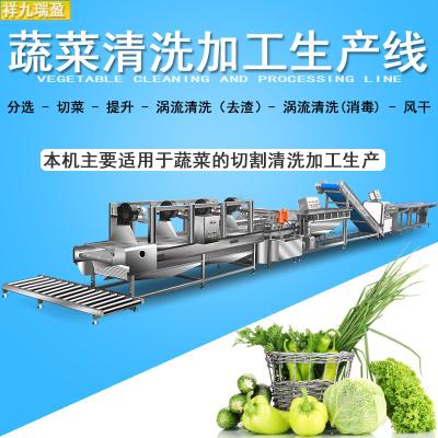 祥九瑞盈 蔬菜加工生產線