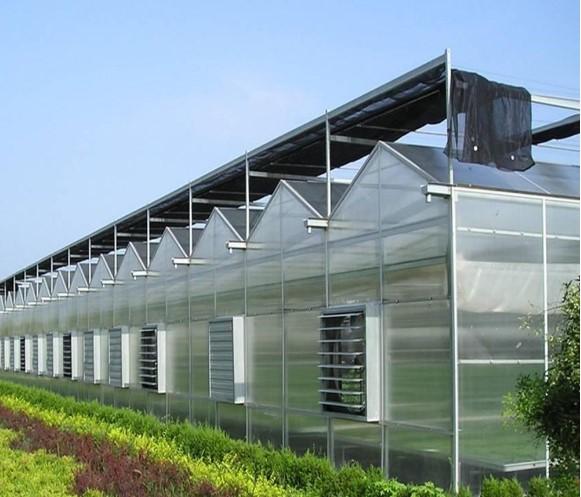 PC阳光板智能连栋温室