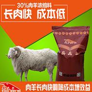 黑山羊吃什么饲料长得快-英美尔快速恍然催肥饲料