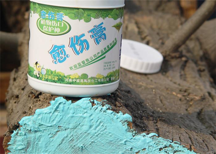 为什么萌芽前修剪用果树愈合剂效果更好,学习如何保护伤口
