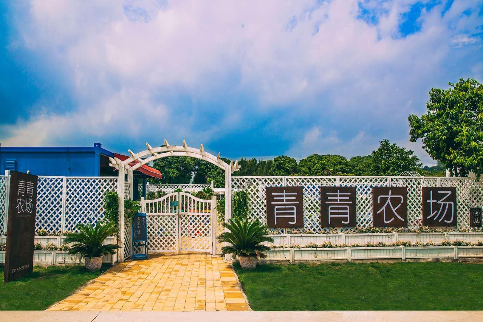 广州可以烧烤野炊篝火的地方 广州团建就来青青农场