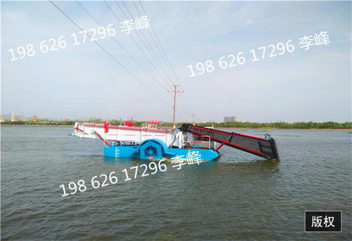 清运船 打捞船 清污船 保洁船 运输船 收割船 清漂船 割草船