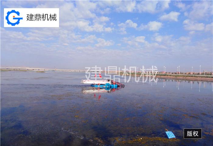 打捞船 清污船 保洁船厂家 运输船 收割船厂家