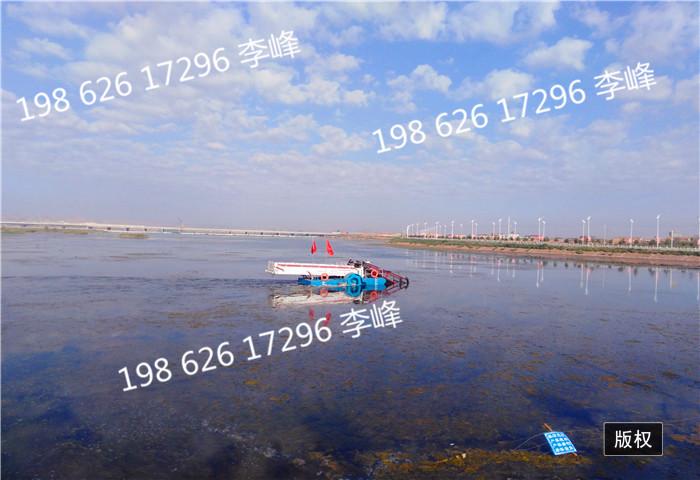 全自动水葫芦打捞船 全自动绿萍收集船  全自动垃圾收集粉碎压榨船 全自动浅滩水草收割船