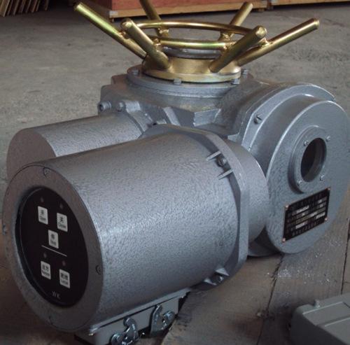 阀门电动装置DZW60-24-A00-DSI
