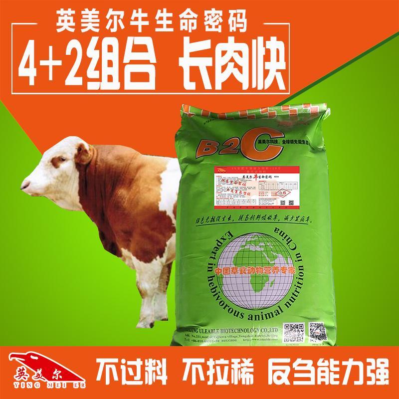 肉牛预混料品牌肉牛催肥专用饲料喂什么好