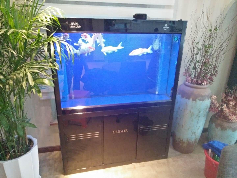 濟南高新區魚缸清洗托管
