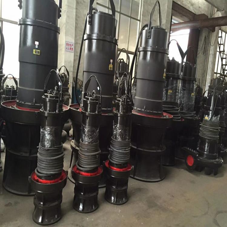 天津东坡厂家销售简易式潜水轴流泵(图)