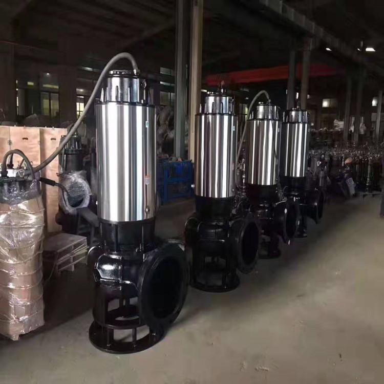 天津东坡泵业-YW型液下式排污泵