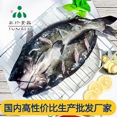 直銷三珍食品冷凍開背鮰魚烤魚店批發采購