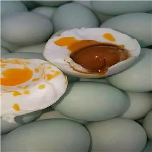 咸鴨蛋腌制柜 咸鴨蛋腌制設備生產廠家