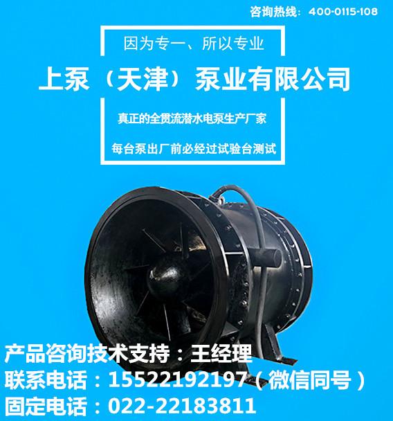 大型水利工程双向排水泵全贯流潜水泵