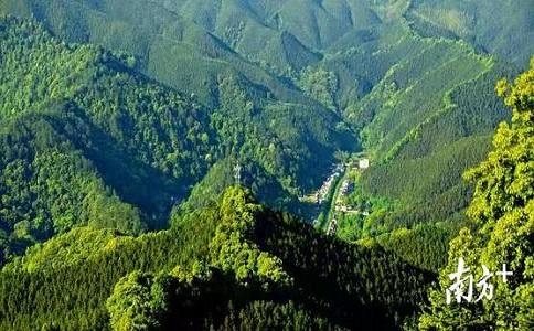 林業調查規劃設計丙級資質梅州代辦條件