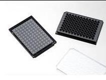 上海增友生物Y-96096激光共聚焦96孔玻璃底細胞培養板黑色避光96孔玻底板顯微鏡玻璃底細胞培養板