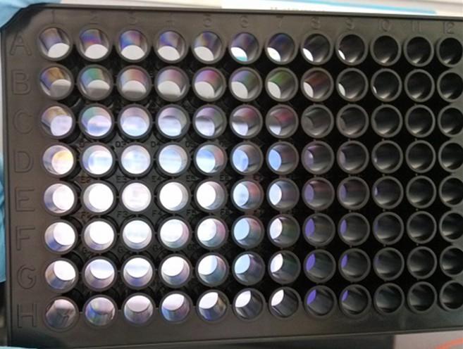 上海增友生物Y-19613全黑底透96孔細胞培養板全黑底透96孔酶標板四壁黑色底部透明塑料細胞培養板