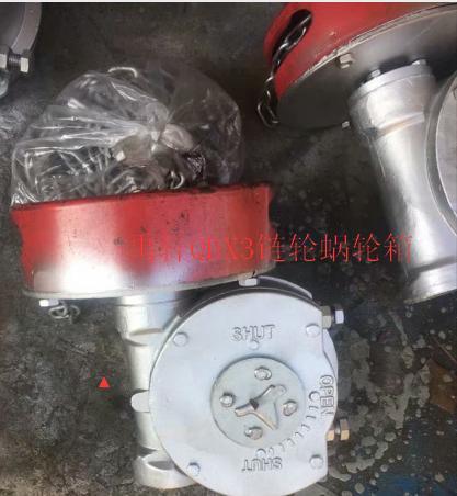 带链条蜗轮箱QDX3-5,煤化工带链轮蝶阀减速机