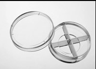 上海增友生物Y-35420激光共聚焦四分格共聚焦玻底培養皿35mm分格共聚焦皿20mm四格共聚焦玻底培養皿四孔格玻底皿
