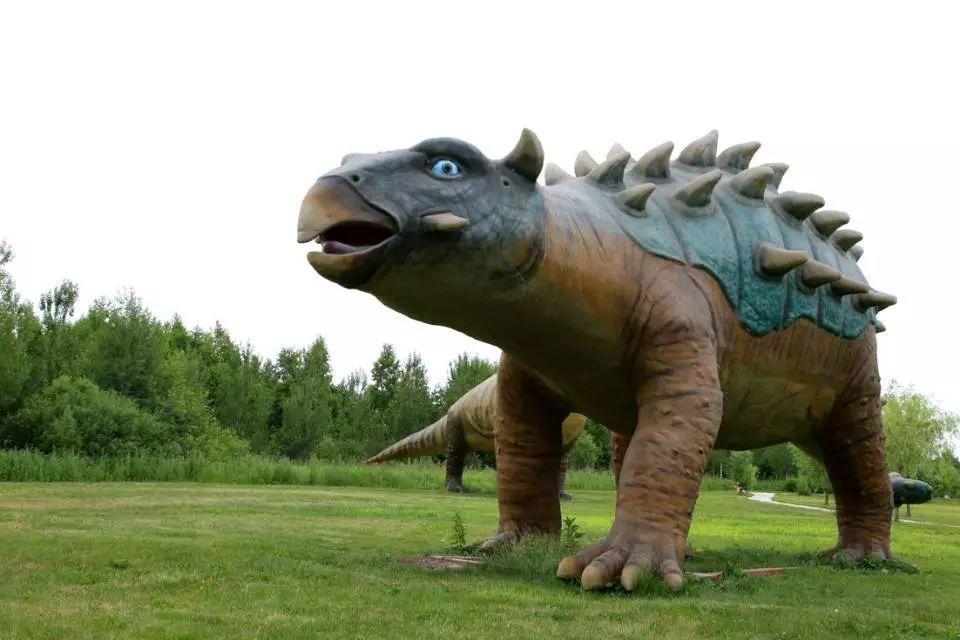仿真恐龙模型 甲龙模型 仿真甲龙制作厂家