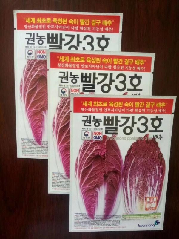 进口紫白菜种子