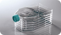 上海百千定制多聚赖氨酸包被培养瓶 PLL蛋白预处理培养瓶 t75、t175规格齐全