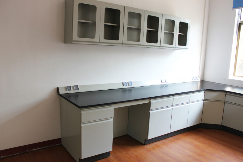 全新供应实验室吊柜全钢结构全木结构吊柜物品存放柜