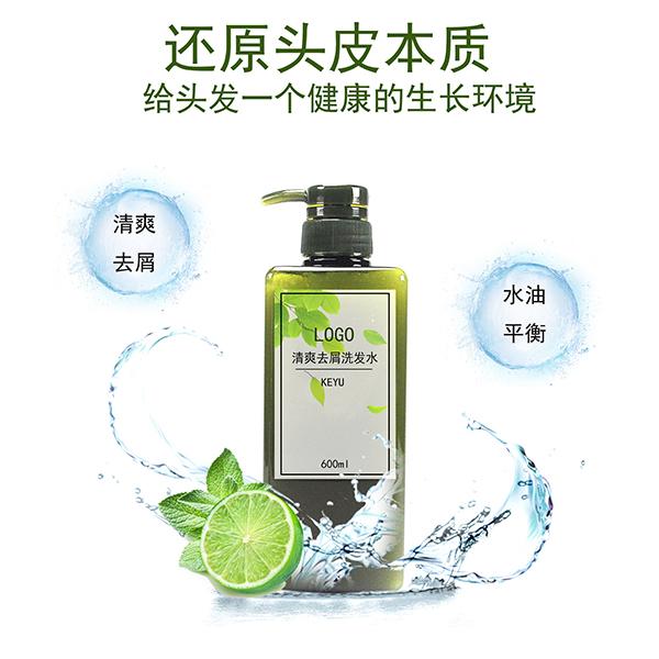 水润保湿平衡油脂去屑洗发水oem科宇创研代加工
