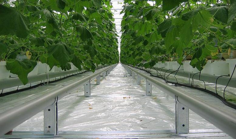 批發 溫室軌道支架 荷蘭溫室圓管底托架 智能采摘車軌道加熱托架