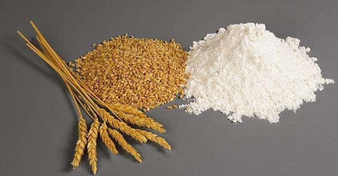 广州粮食加工品全项测试 食品添加剂检测