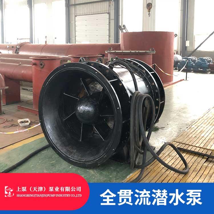 广东中山QGWZS双向贯流泵制造