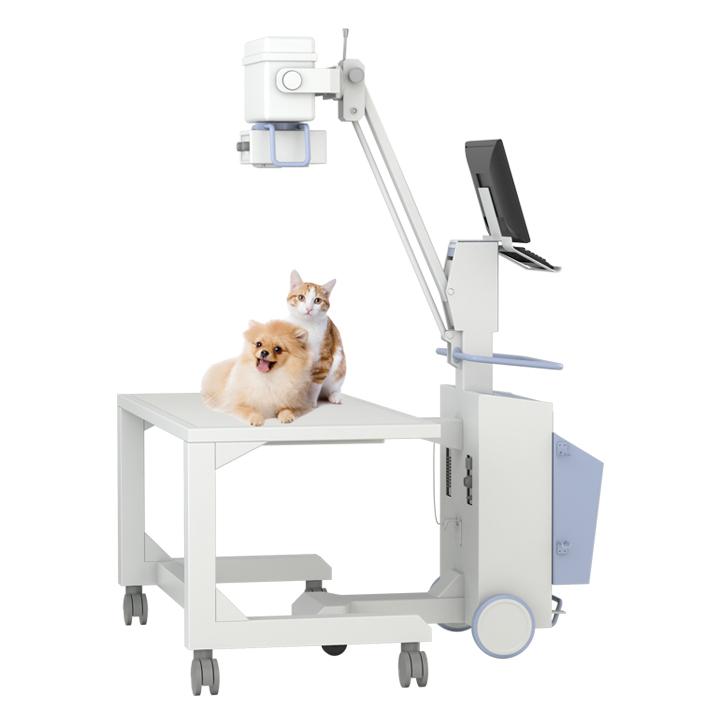 高配置宠物DR怎么购买?