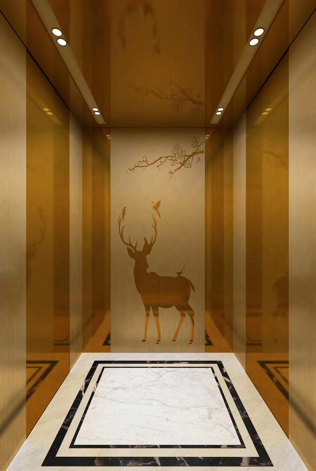 华北地区电梯装潢酒店大厦别墅电梯装饰