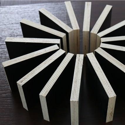 南阳出售建筑模板批发市场