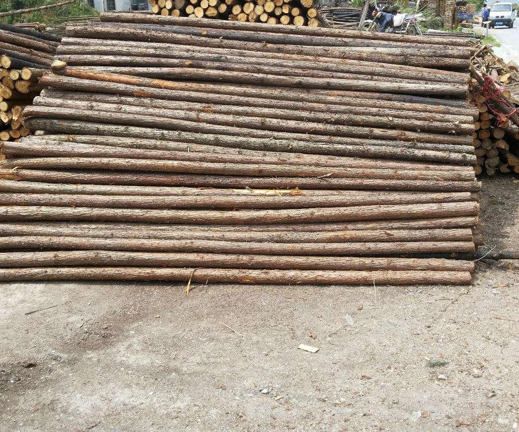 南阳出售杉木杆批发市场